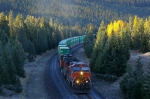 BNSF 962 East